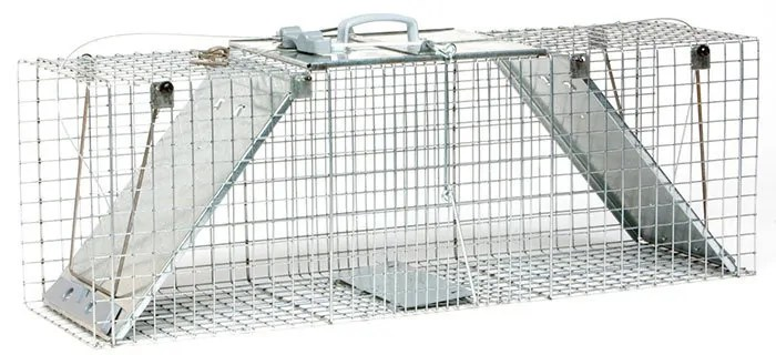 havahart cat trap instructions